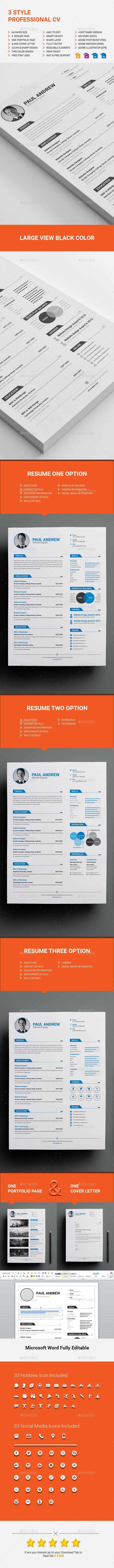 3 Style Professional CV Price 9