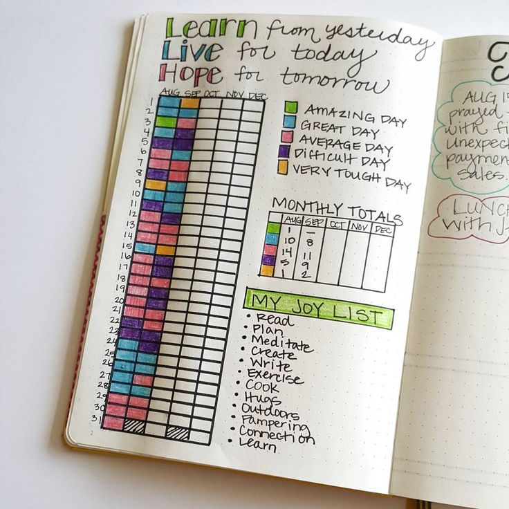 Love Year of Pixels but want to focus less on your moods and more on how your day went? (Amazing day, great day, average day, difficult day or very tough day?) This idea may be the one for you. Complete with a table of totals and a Joy List. Definitely inspiration for your bullet journal, along with many other examples.