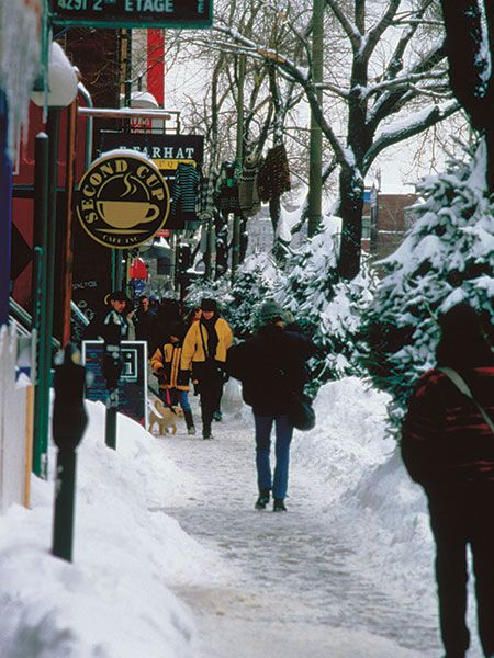 Montreal's winter wonderland: What to see and do when it's -25ºC