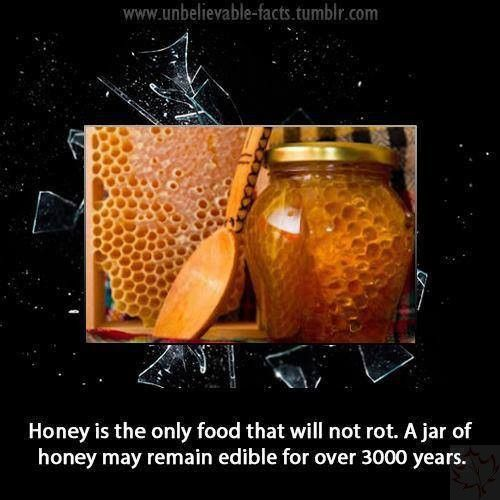 Honey ~ Did You Know? - Canadian Basics