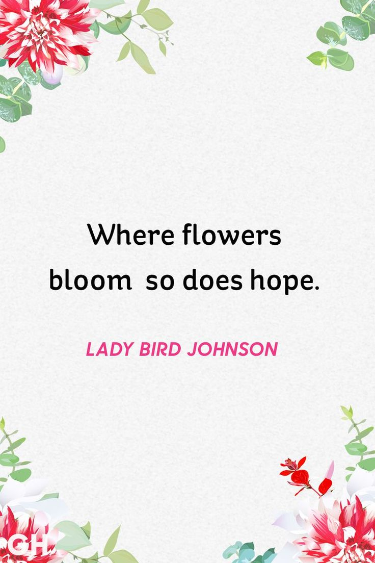 20 Beautiful Spring Quotes for the Year's Best Season lady bird johnson spring quote
