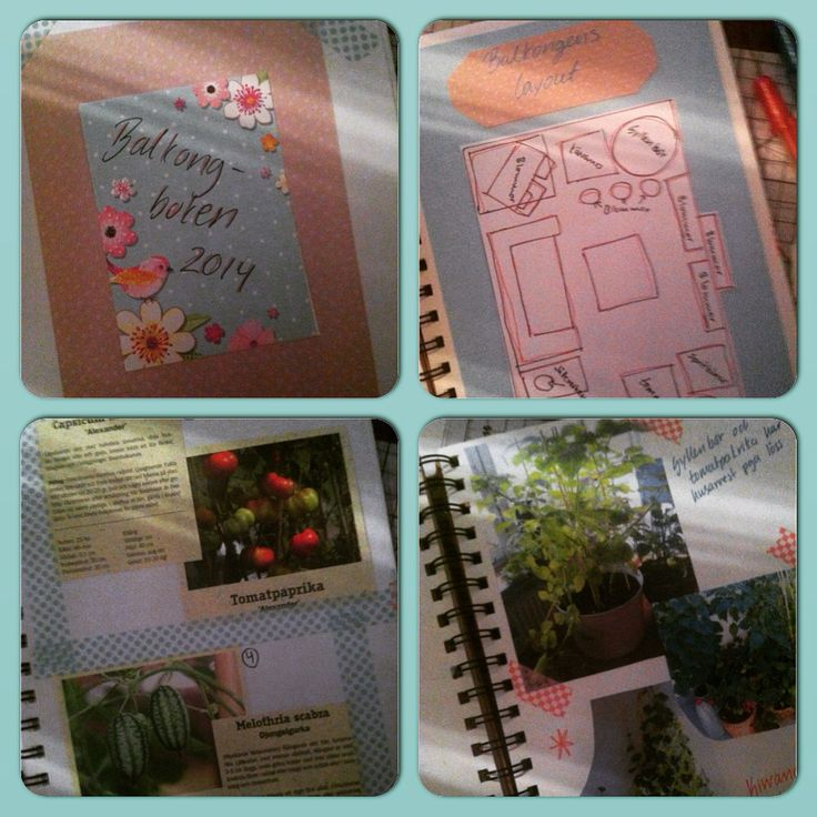 A small scrapbook album dedicated to my balcony 2014. Including a layout of all the pots with plants, description of the plants and how they grew and pictures.