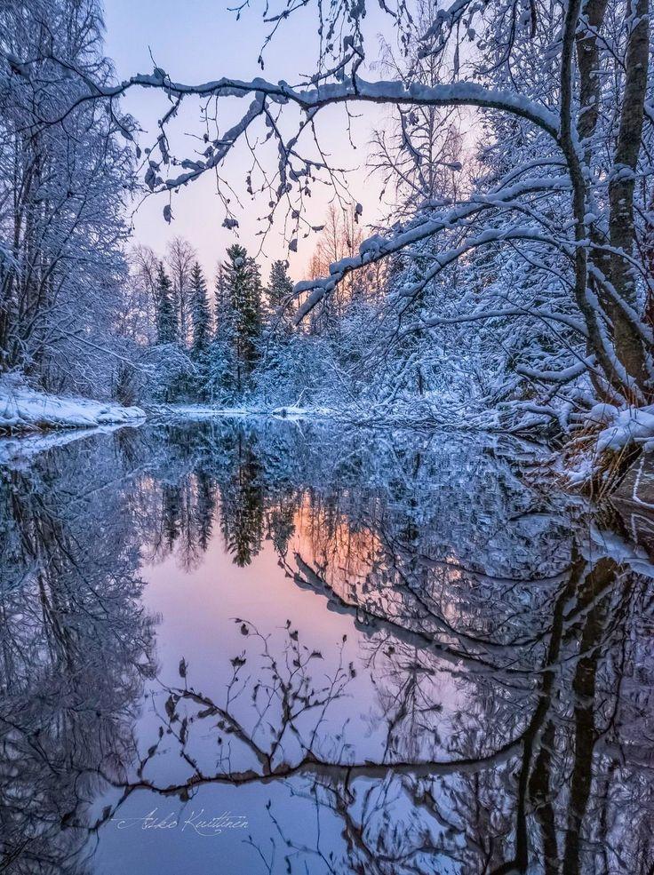***Winter morning (Finland) by Asko Kuittinen ❄️️
