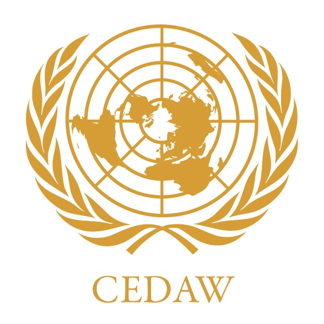 """Chapter 11. A topic in this chapter is CEDAW (Convention on the Elimination of Discrimination Against Women) Committee, a group of women's rights experts who monitor compliance with CEDAW, the important women's rights document. The article goes into detail about how the CEDAW committee is recommending how Singapore can better combat gender inequality and protect women's rights. Some suggestions included abolishing marital immunity for rape, the """"head of household"""" concept, and polygamy."""