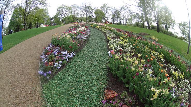 Garden buga park 2015
