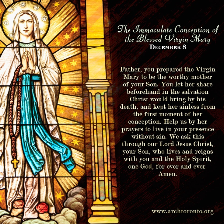 Feast Of Immaculate Conception on Pinterest | Immaculate Conception ...