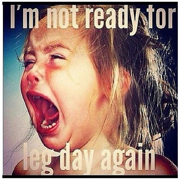 I'm not ready for leg day again.