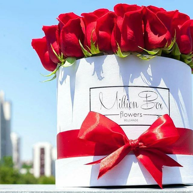 The infinite beauty of a rose is priceless! ( Frumusețea infinită a unui trandafir este de nepretuit ! ) #Rose #Bouquet #Love #Luxury #Gift #Beautiful #Birthday #Trandafir #Buchet #Dragoste #Lux #Cadou #Frumos #Aniversare