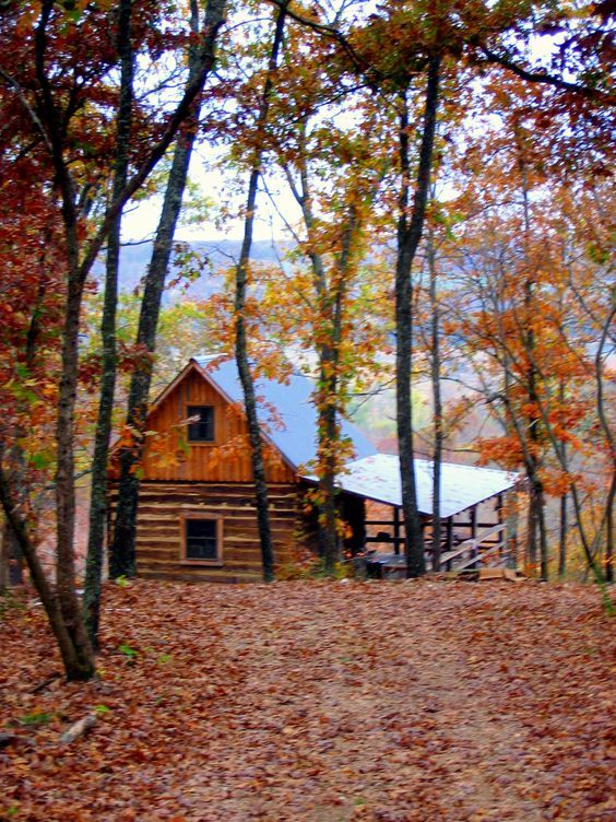 Rustic Cabin retreat at the lake. Simple lake house.