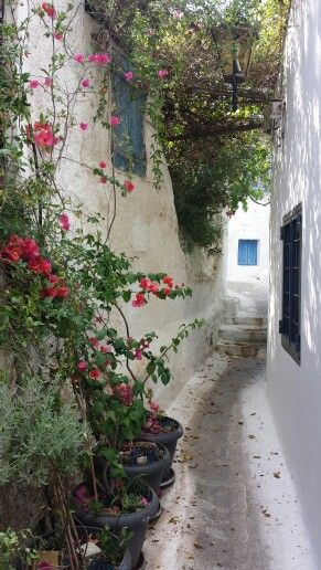 Secret streets of Athens