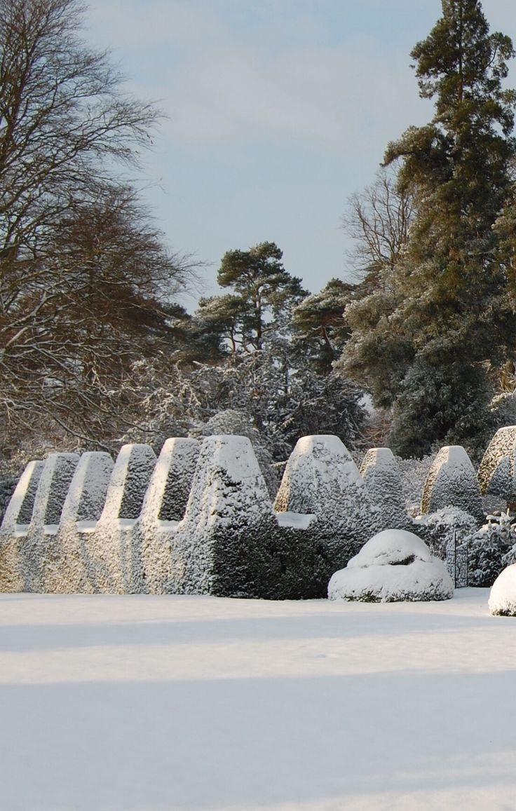 211 best winter gardens images on pinterest winter garden