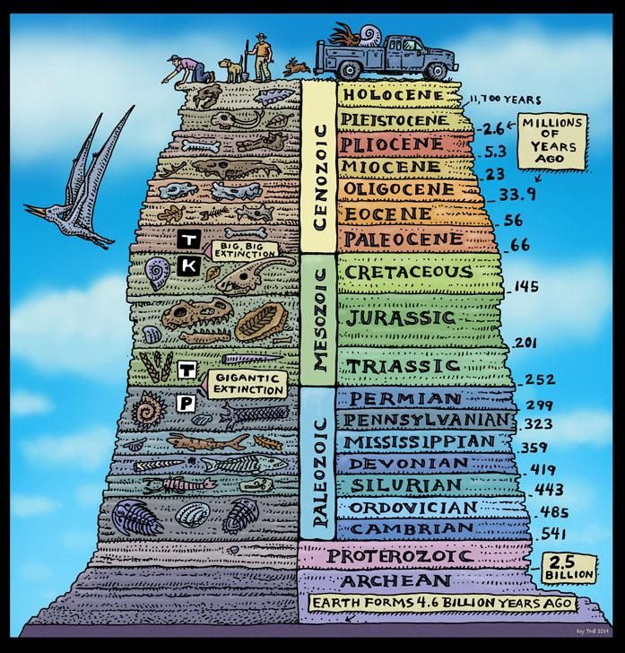 I love this wonderful diagram by Ray Troll especially now he's updated the Pleistocene 2.6 Ma! http://www.trollart.com/fossils1.html