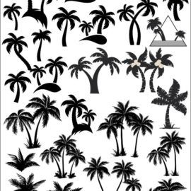Векторные пальмы: силуэт дерева.