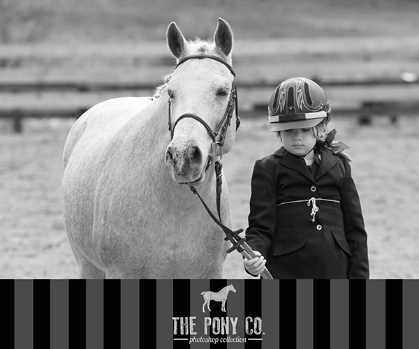 Bottom Border. Photoshop Action from The Pony Co. http://www.theponyco.com