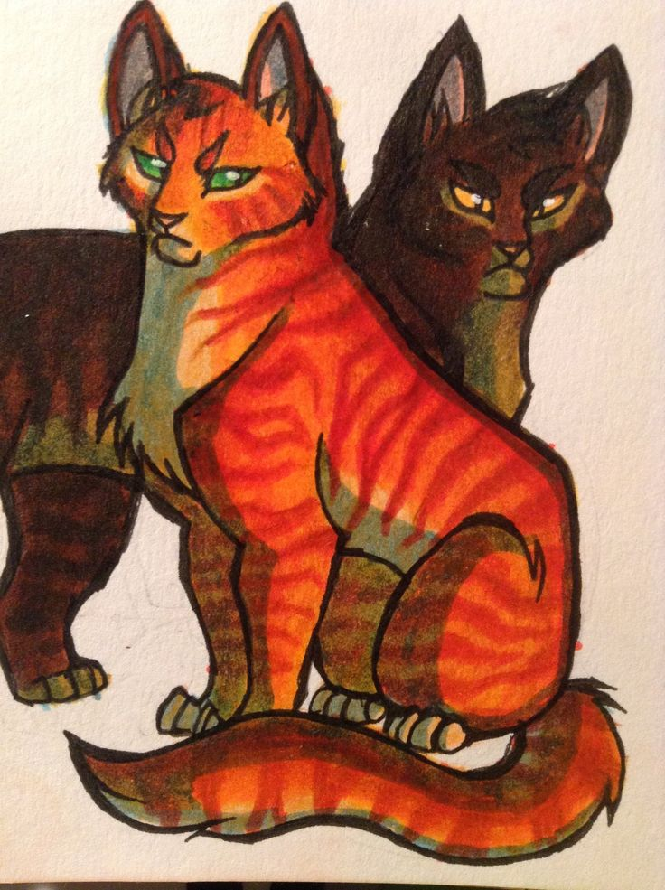 Firestar and Brambleclaw by NeoSkejd.deviantart.com on @DeviantArt