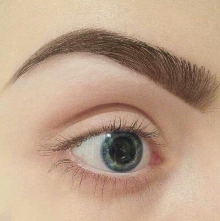 how to know your eyebrow shape