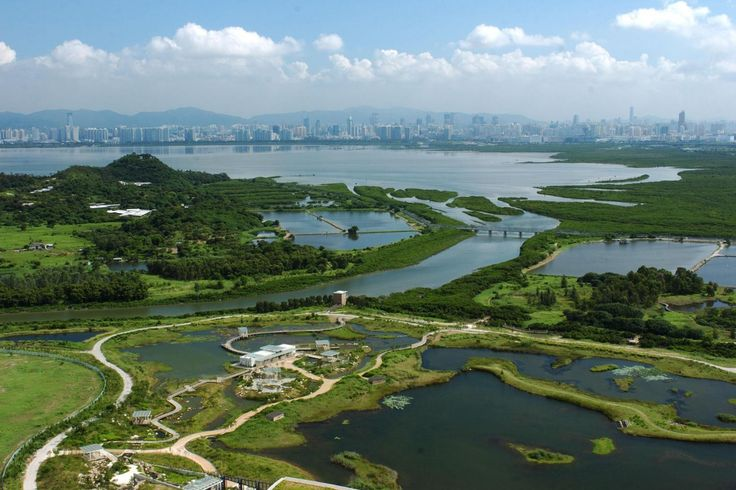 hong kong wetland park - Google-søk