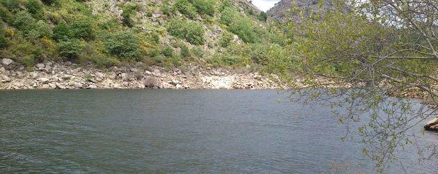 Largada de trutas – Barragem da Teja