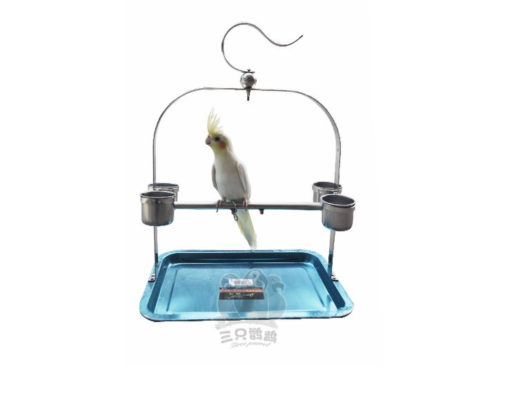 Hot Sale Stainless Steel Parrot Stand Holder / Bird Cage Shelf Rack portable Starling myna peony birdcage with Stop lever // FREE Shipping //     Get it here ---> https://thepetscastle.com/hot-sale-stainless-steel-parrot-stand-holder-bird-cage-shelf-rack-portable-starling-myna-peony-birdcage-with-stop-lever/    #hound #sleeping #puppies