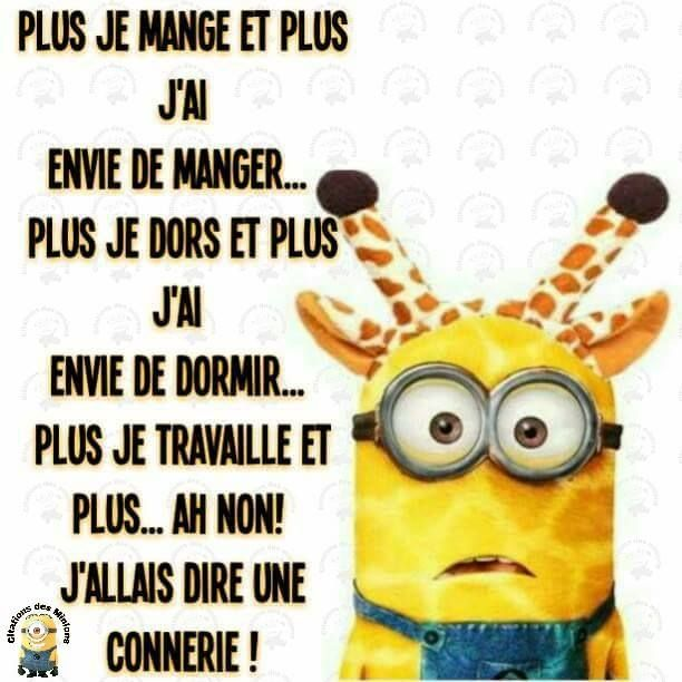 113 best images about dr le de minion on pinterest french style facebook and bureaus. Black Bedroom Furniture Sets. Home Design Ideas
