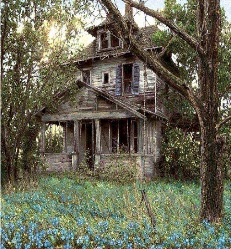 Best 25 abandoned houses ideas on pinterest old for Classic houses images