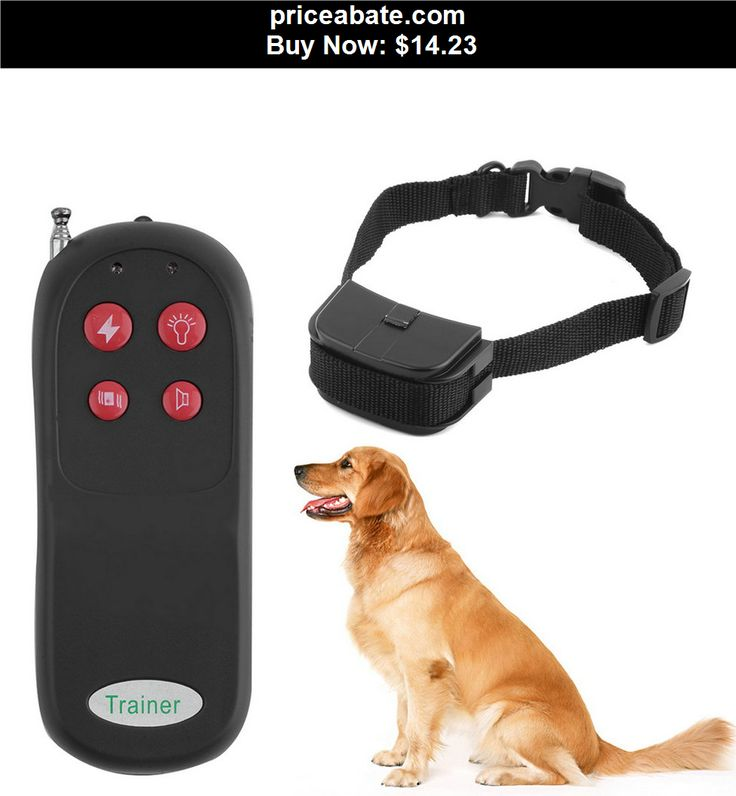 You Tube Dog Training With Shock Collar