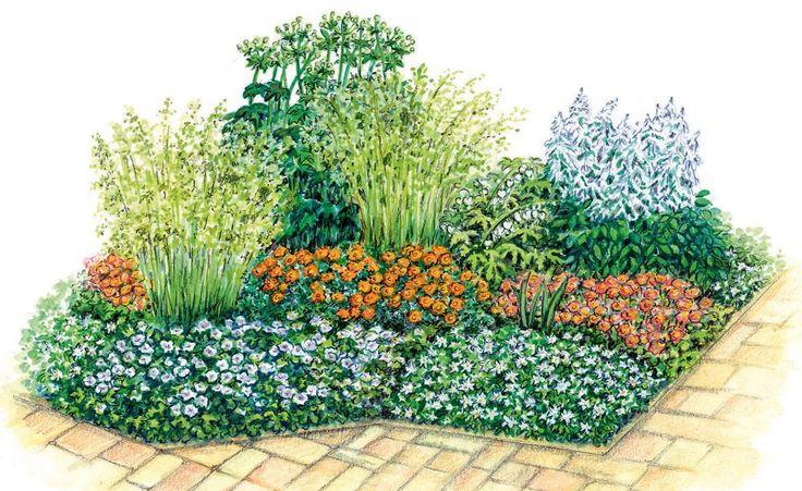 Orange und Weiß sorgen in den Beeten für einen kräftigen Farb-Cocktail: Fingerstrauch und Nelkenwurz steuern orange Blüten bei, alle weiteren Stauden weiße. Ziergräser vermitteln mit zartem Grün und filigranen Halmen