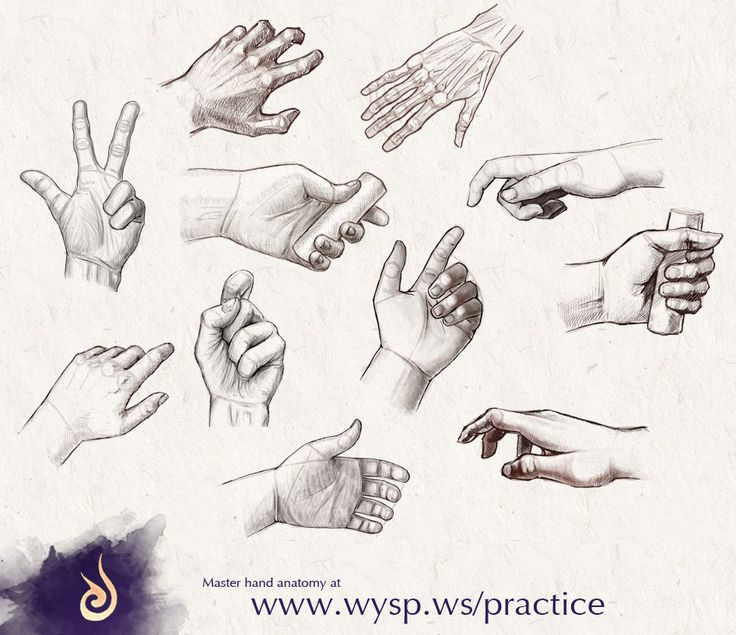 112 best How to draw hand images on Pinterest | Drawing hands ...
