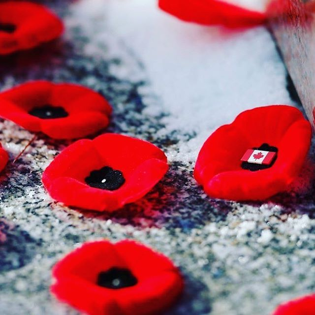 Thank you. Thank you to all #veterans past & present who have sacrificed so much for our country to be the true north strong & #free. #lestweforget #remembranceday