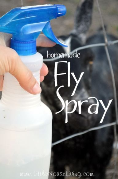 Home Made Fly Spray. All natural spray for your livestock to keep the flies and other bugs from bothering them!