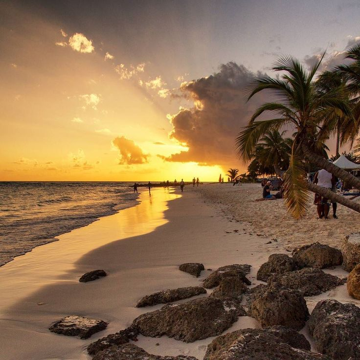 Barbados has all of you can look