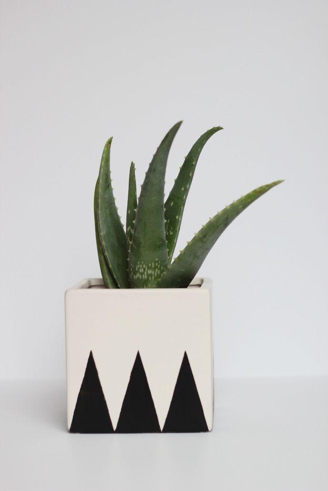 DIY Geometric Planter Tutorial