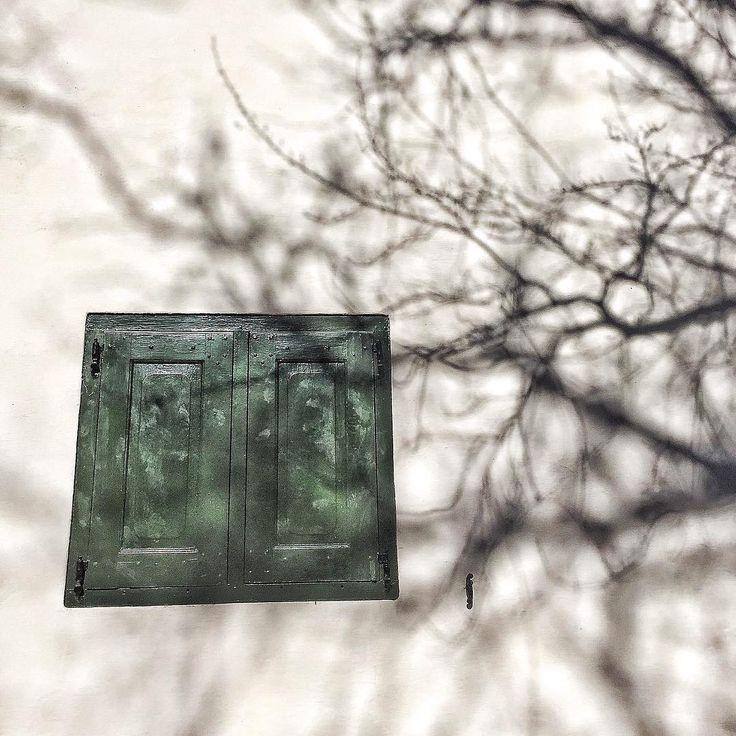windows, photography