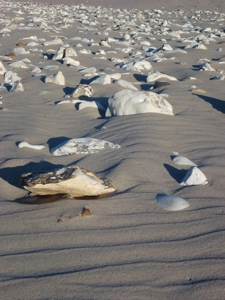Sandbølger