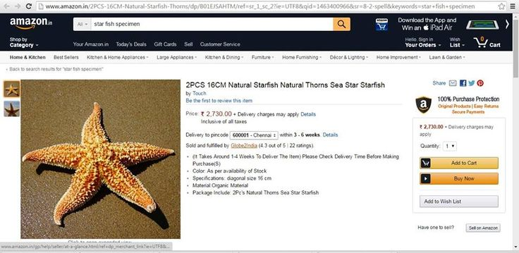 Amazon India is still selling wild animal specimens on their website. Here is a #Starfish being sold on Amazon, selling animal trophies only encourages poaching and the illegal wildlife trade which contributes to the obliteration of countless species.  Sign our petition today: https://www.change.org/p/jeff-bezos-amazon-com-stop-selling-snares-and-leg-hold-traps  Please help us fight against this cruelty by registering your complaint on this link on the Amazon website: http://amzn.to/1TcGcT6