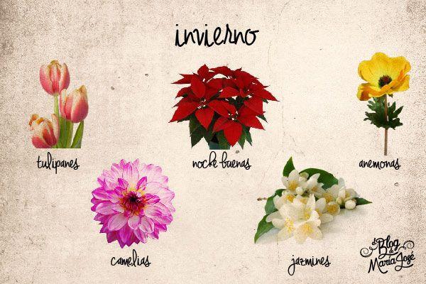 Las flores de boda florecen en ciertas temporadas. Estas son las que se dan en…