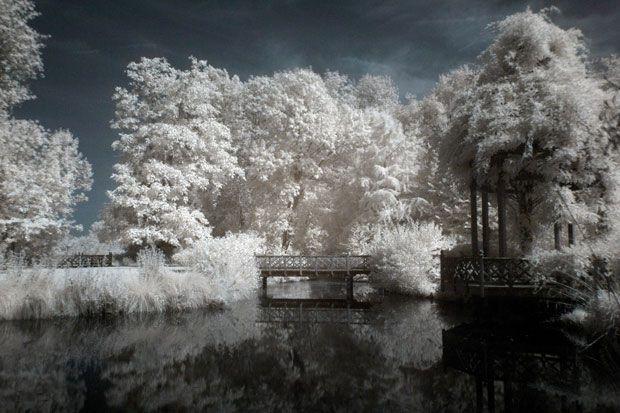 en pratique : la photographie infrarouge