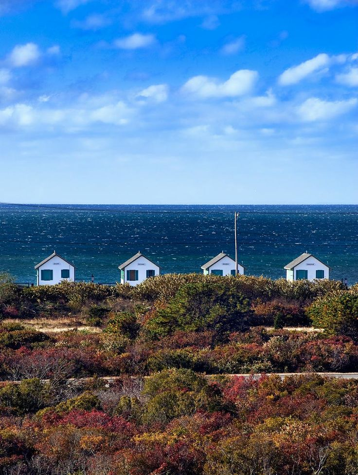 Beach Cottages, Truro, Cape Cod