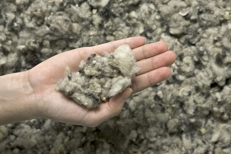 The Great Insulation Debate: wool insulation