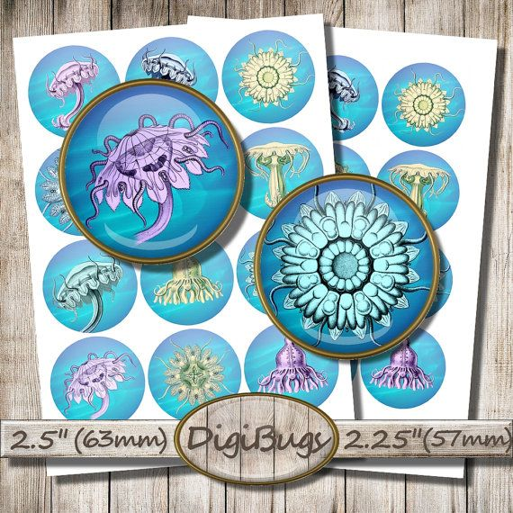 """Sea Animals, Digital Collage Sheet, 2.5"""" , 2.25"""" Circles, Sea Life, Jellyfish Hydra for Toppers, Instant Download, Printable Circles, b4"""