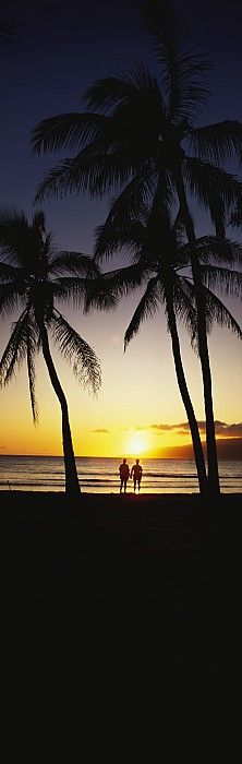 Sunset Hawaii   re-pinned by http://www.wfpblogs.com/author/southfloridah2o/ ☆.¸¸.•´¯`♥◉★