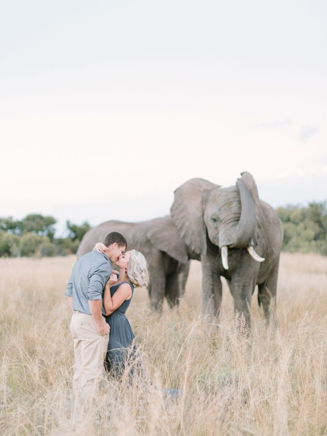 Breathtaking South African safari e-sesh: http://www.stylemepretty.com/destination-weddings/2015/09/02/romantic-south-african-safari-engagement-session/ | Photography: Rensche Mari - http://www.renschemari.com/