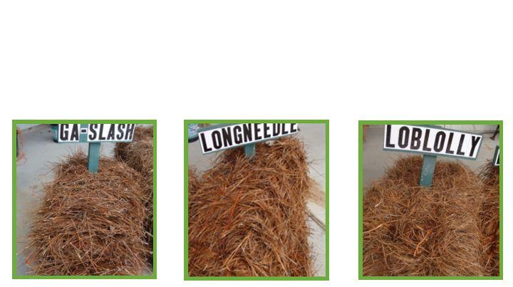 10 Cu Yd Brown Landscape Loose Bulk Mulch Bkdmbr10 At The Home Depot Mobile Bulk Mulch Mulch Wood Mulch