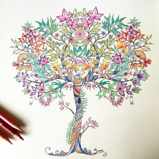 388 Best Magical Jungle Coloring Images On Pinterest