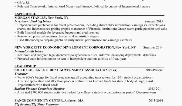 70 Best Of Collection Of Sample Resume Student Government