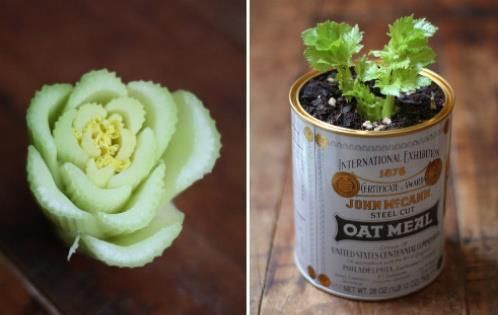 Keep growing your own celery