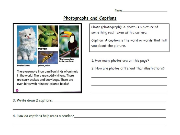 Nonfiction Text Features Can Be Easy Even For First Grade  This Packet Defines The Text Features