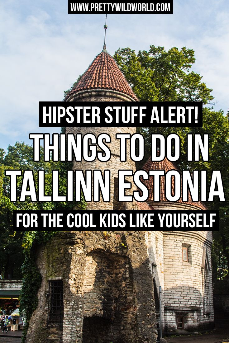 Interested to know what are the hipster things to do in Tallinn the capital of Estonia? Then check out this post to learn and be inspired!