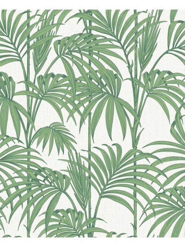 Plus de 25 des meilleures id es de la cat gorie imprim s tropicaux sur pinter - Papier peint tropical ...