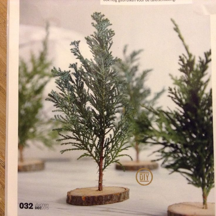 Kerstboompje van takje conifeer en houten schijf. DIY